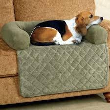 Poochplanet Dog Bed by Posture Pedic Dog Beds Bedroom Lovable More Sleepy Puppies Bean