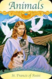 st francis of assisi animals archangel oracle guidance