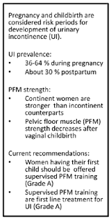 Pelvic Floor Muscle Training by The Pelvic Floor During Pregnancy And After Childbirth And The