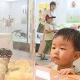 島根県立三瓶自然館, カブトムシ, 大田市, 日本, ヘラクレスオオカブト