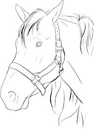 Printable Horse Jumping Coloring Pages Realistic Horses Printabl