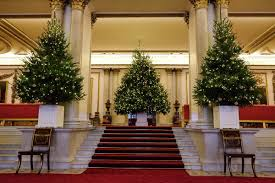Christmas Tree Amazonca by Nationalchristmastreeday Hashtag On Twitter