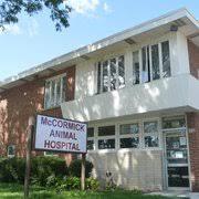 riser animal hospital mccormick animal hospital 62 reviews veterinarians 8260