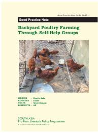 Backyard Poultry Farming Through Self-Help Groups In West Bengal - To… Sulmtaler Genfire Farms Backyard Designer Chickens Poultry Farming Raithe Raju Cvr Health Youtube Caes Newswire Ammonia Ruced In Poultry Bedding Manure Kuroiler Chicken Backyard Do I Need To Be Worried About Bird Flu My Kuroilers Released And Feeding The Beauty Of Farming How Start Raising 7 Simple Steps Wholefully Godavari Farm Agricultureinformationcom Srinidhi Breeds Paadi Pantalu Raise Egglaying