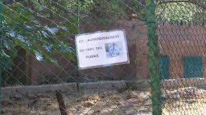 zoo du mont faron picture of zoo fauverie du faron toulon