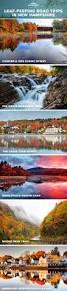 Beantown Bed And Biscuit by 435 Best Maine Images On Pinterest Maine Family Vacations And
