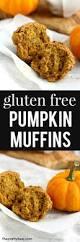 Vegan Pumpkin Muffins Applesauce by Gluten Free Pumpkin Muffins The Pretty Bee