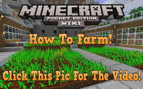 Minecraft Pumpkin Seeds Pe by Farming Minecraft Pocket Edition Wiki Fandom Powered By Wikia