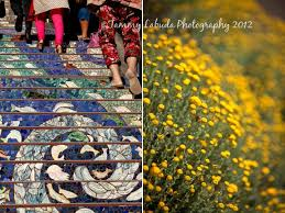 16th Avenue Tiled Steps In San Francisco by Tammy Labuda Photography San Francisco The 16th Avenue Tiled