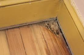 Best Hardwood Floor Scraper by Hardwood Floor Newjersey Oldhouse