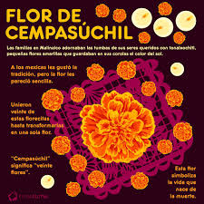 Flor De Cempasúchil Diseño Flor Cempasuchil Altares De