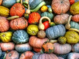Ohio Pumpkin Festival by Her Realtors Blog Real Estate In Ohio