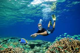 100 Anantara Kihavah Villas Snorkellingwithfish