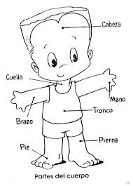 Free Spanish Coloring Pages Partes Del Cuerpo