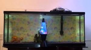 cheap fish tank find fish tank deals on