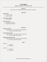 Sample Resume For It Graduates Objective Sentence Formal Example Of College Students With No Experience