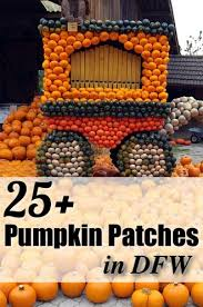 Pumpkin Patch Waco Tx 2015 by 290 Best Fun In Dallas Fort Worth Texas Images On Pinterest Fort