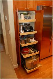 Corner Pantry Cabinet Dimensions by Pull Out Pantry Cabinets For Kitchen Home Design Ideas