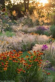 Best 25+ Meadow Garden Ideas On Pinterest | Wild Flower Meadow ... Free Images Blossom Lawn Flower Bloom Backyard Botany Go Native Or Wild News Creating A Wildflower Meadow From Part 1 Youtube Wildflower Garden Update Life In Pearls And Sports Bras Budapest Domestic Integrity Field Of Wildflowers She Shed Decorating Ideas How To Decorate Your Backyard Pics Best 25 Meadow Garden Ideas On Pinterest Rockoakdeer Neighborhood For National Week About Texas A Whole Wildflowers For Tears The Duster Today Fields Flowers Design With Apartment Balcony