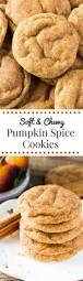 Libbys Pumpkin Cookies With Chocolate Chips by Pumpkin Spice Cookies Just So Tasty