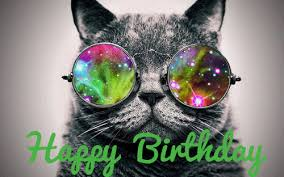 Cat glasses Happy Birthday animated GIF