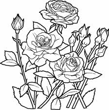 Elegant Roses For Beautiful Flower Bouquet Coloring Page