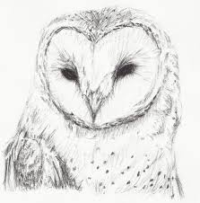 A Drawing Of An Owl Pics Photos - Barn Owl Sketches Pencil ... Pencil Drawing Of Old Barn And Silo Stock Photography Image Sketches Barns Images The Best Red Store Opens Again For Season Oak Hill Farmer Gallery Of Manson Skb Architects 26 Owl Sketch By Mostlyharmful On Deviantart Sketch Cliparts Zone Pen Drawings Old Barns Acrylic Yahoo Search Results 15 Original Hand Drawn Farm Collection Vector Westside Rd Urban Sketchers North Bay Top 10 For Design Sketches Ralph Parker Artist