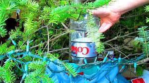 Xmas Tree Waterer by How To Water Your Christmas Tree When You U0027re Gone Sugid Youtube