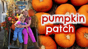 Colorado Springs Pumpkin Patch 2017 by Pumpkin Patch Fun Again Youtube