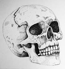 Black And White Drawing Ideas Stipple