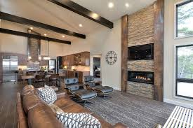 Image Of Rustic Contemporary Living Room Style