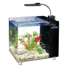 Spongebob Aquarium Decor Amazon by Hidom Mini Desktop Aquarium Fish Tank 15 Litre With Filter And