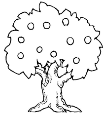 Colouring Page Of Tree 20 Fruit Trees Coloring Pages With Free