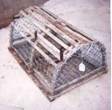 used lobster traps