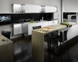 Premier Cabinet Refacing Tampa by Noteworthy Modern Yellow Kitchen Cabinets Tags Modern Cabinets
