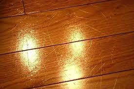 Bamboo Floor In Kitchen Pros And Cons Flooring Engineered Hardwood Wood Floors