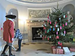 Christmas Tree Saplings Ireland by Just Saying 2014