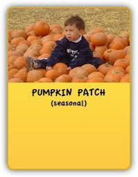Frederick Maryland Pumpkin Patch by Crumland Farms Frederick Md Pumpkin Patches Maryland
