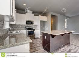 cuisine en dur cuisine unique avec le plancher en bois dur gris image stock image