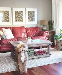 Red Leather Couch Living Room Ideas by Best 25 Red Leather Couches Ideas On Pinterest Red Leather