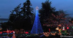 Flagpole Christmas Tree Kit White by Pole Christmas Tree Best Interior Design Ideas