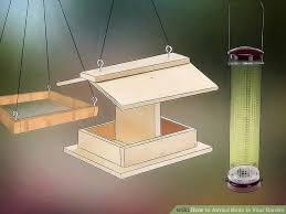 Attracting Insects To Your Garden by 3 Ways To Attract Birds To Your Garden Wikihow