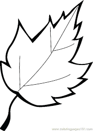 Leaf Coloring Pages Images Page Printable For Kids And Adults Best Ideas On Autumn Color