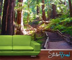 wall mural decal sticker giant redwood tree forest 8ft mmartin118