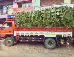 India, Kerala - 8 Jan 2016: Truck Load Of Bananas In Southern ... Ocrv Orange County Rv And Truck Collision Center Body Shop Dutchers Inc Landscape Bodies Trash South Jersey Videos My Glass An Old School Chevy With New Duramax Power About Ste Equipment Found In Southern Wyoming Authorities Vesgating Possible Southern 2004 Freightliner M2 Fsbo Classifieds Roadways Ltd Photos Tannery Road Bangalore Pictures Equipment Post 38 39 2013 By 1clickaway Issuu Bed Beds Three Person Bunk Truck Side Step Rod