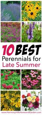 15 diy how to make your backyard awesome ideas 11 plants