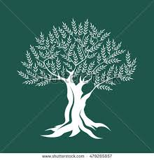 Olive tree silhouette icon isolated on green background Web graphics modern vector sign Premium