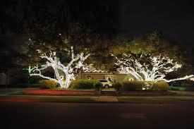 Residential Christmas Light Tree Wrap