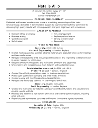 How To Write A Professional Summary For A Resume by Exles Of Professional Summary For Resume 58 Images