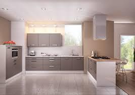 couleurs cuisines cuisine modèle glacée en stratifié mat de couleur ou décor bois